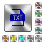 Fotografie TXT file format rounded square steel buttons