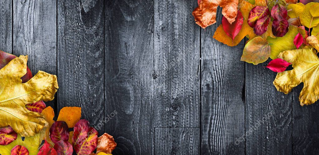 Autumn Leaves on  Wooden background.