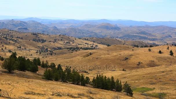 Movie of high desert terrain and vegetation in Antelope Central Oregon USA 1080p