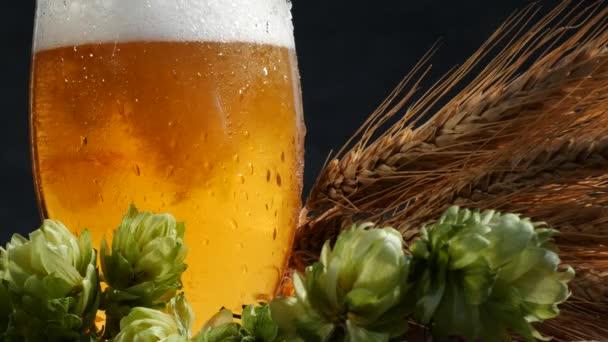 Sör üveg a maláta és a komló. Az üveg sör öntés.