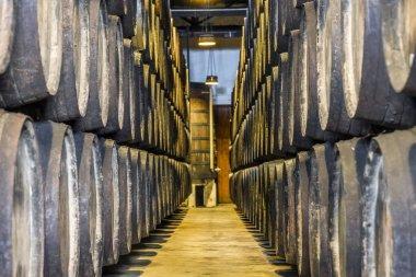 Plenty of wine barrels in Porto area, Portugal