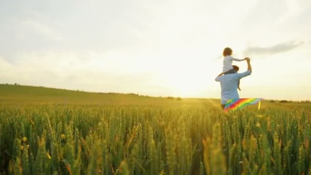 Father running in green wheat field with his son on the shoulders. Kid playing with flying kite. Rear view. On sunset