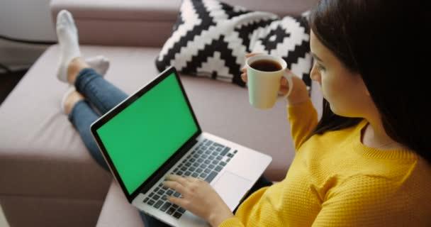 Mladá bruneta žena pomocí přenosného pc s zelenou obrazovkou, pití kávy, zatímco sedí na gauči v obývacím pokoji. Pohled zezadu. Chroma klíč