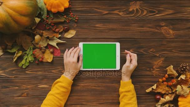 Podzimní pohled shora tabulky s dýní a javorové listy. Žena používající tabletový počítač s zeleným plátnem na hnědý dřevěný stůl. Chromatický klíč. Rozložení bytu