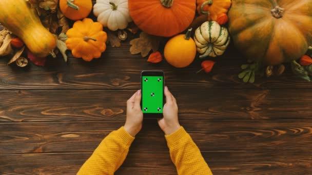 Pohled shora na podzimní dýně na dřevěný stůl. Žena ruce posouvání, klepnutí a zvětšování na obrazovce chytrého telefonu zelené. Svislá pozice. Chromatický klíč. Sledování pohybu