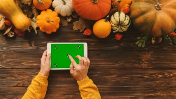 Podzimní pohled shora dýně na dřevěný stůl. Žena ruce posouvání a klepnutím na zařízení bílých tablet s zeleným plátnem. Chromatický klíč. Sledování pohybu