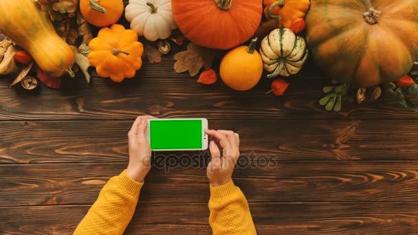 Podzimní pohled shora složení dýně a bílý smartphone s zelenou obrazovkou ve vodorovné poloze na dřevěný stůl. Žena posouvání, zvětšování obrazovky. Chromatický klíč. Sledování pohybu. Rozložení bytu
