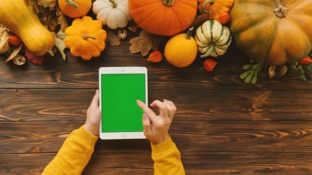 Tabulka pohled shora s oranžové dýně na vrcholu. Žena, posouvání a klepnutím na touchscreen zařízení bílých tablet s zeleným plátnem. Svislá pozice. Chromatický klíč. Podzim, podzim
