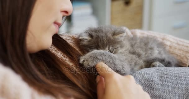 Close up of young woman caressing and playing with a funny grey little cat lying on the couch. Inside home