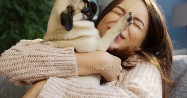 Zblízka se okouzlující mladé ženy v růžový svetr objímání její Mops a se smíchem, zatímco sedí v místnosti u vás doma. Portrét. Uvnitř
