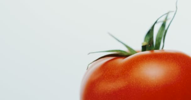 Makroaufnahme des oberen Teils der roten Tomate auf weißem Hintergrund. Nahaufnahme