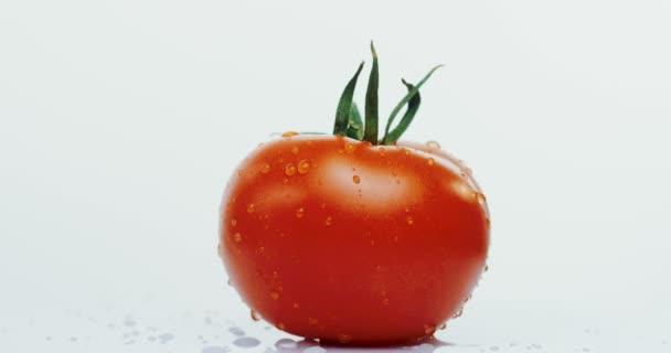 Makro střelbu z červené rajče s kapky vody na pozadí bílé zdi. Detailní záběr
