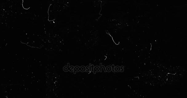 fekete-fehér háttér reális pislákoló, analóg vintage televíziós jelforrás rossz beavatkozás, statikus zaj háttér