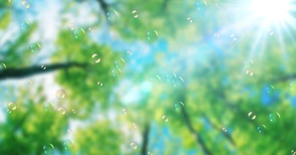 mýdlové bubliny plovoucí na zelené přírody pozadí pod modrou oblohou se sluneční paprsky světla, bublina dmychadlo