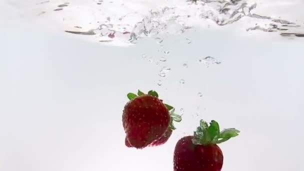 Červené ovoce jahody spadající do vody s úvodní, zastřelil v pomalém pohybu na bílém pozadí, jahod pro zdraví a diety, výživa