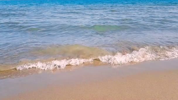 tropical caribbean beach sea with gold sand, holiday, shot in slow motion, relax and travel