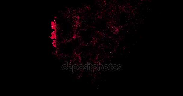 Animation De Forme Coeur Rouge De Petales De Rose Rouges Desintegration De Particules Rouges Sur Fond D Ecran Noir Avec Un Canal Alpha Vacances Saint Valentin Journee Evenement Amour Relation Couple