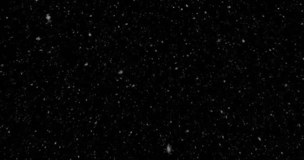 karácsonyi valós hópelyhek hóesésben felső, téli üdülés a karácsonyi csillagok varrat nélküli hurok a fekete háttér