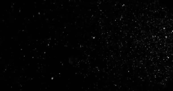 karácsonyi valós hópelyhek hóesésben, felső, téli üdülés esemény csillagok varrat nélküli hurok a fekete háttér
