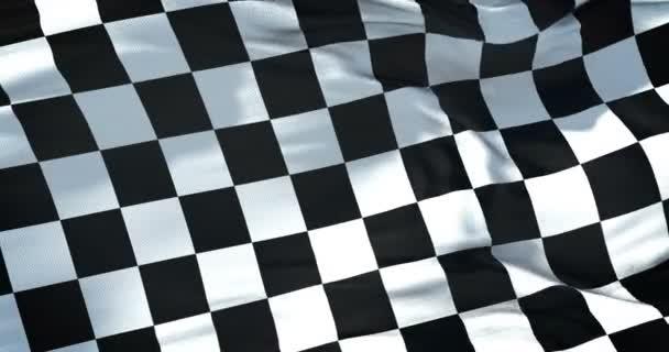 Zielflagge, Rennende, echte Bewegung, Formel-1-Wettbewerbskonzept