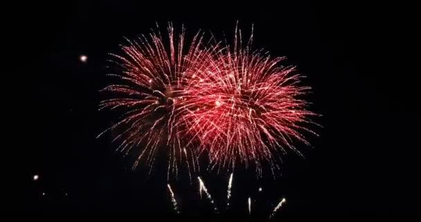 Multicolor real abstrakt blinkt funkeln Feier Feuerwerk Lichter auf schwarzem Hintergrund, festlich frohes neues Jahr