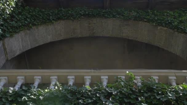 Große Terrasse In Pflanzen Stockvideo Traiplershop 144846127