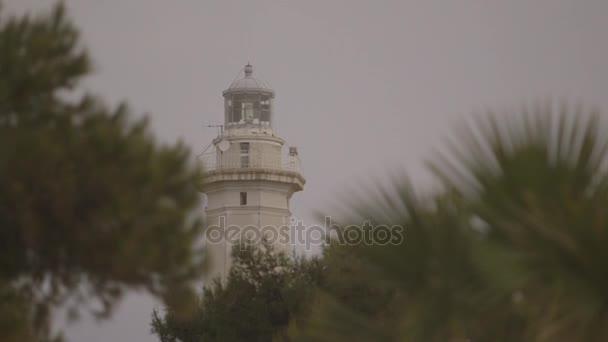 maják mezi stromy v Taranto