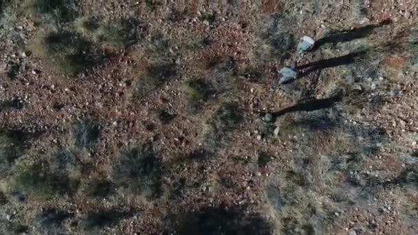 a légi felvétel a vadászok fegyvereket séta szárított mező napos időben