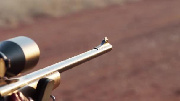 Lövés, egy nagy teljesítményű vadászpuskát, Dél-Afrika vadászat gazdaságban kirúgták