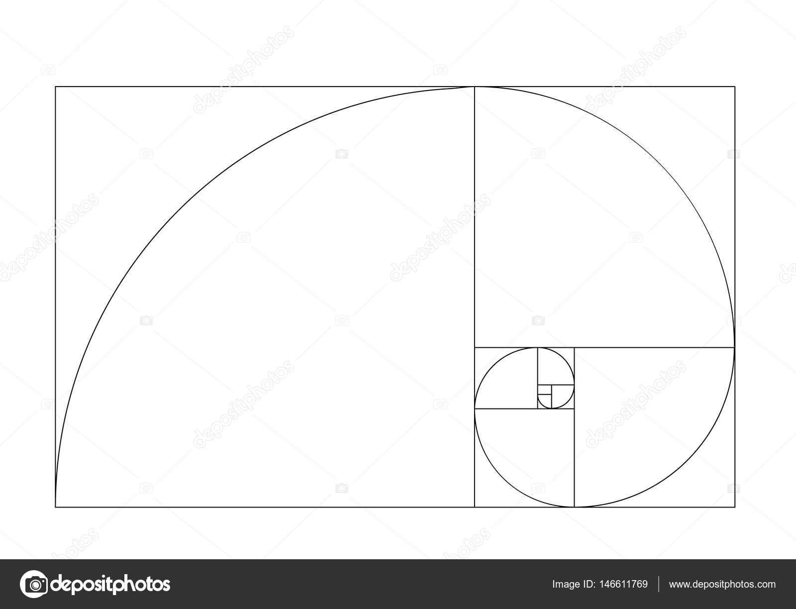 golden ratio template vector golden section frame stock vector
