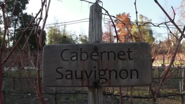 Cavernet Sauvignon víno pole znak