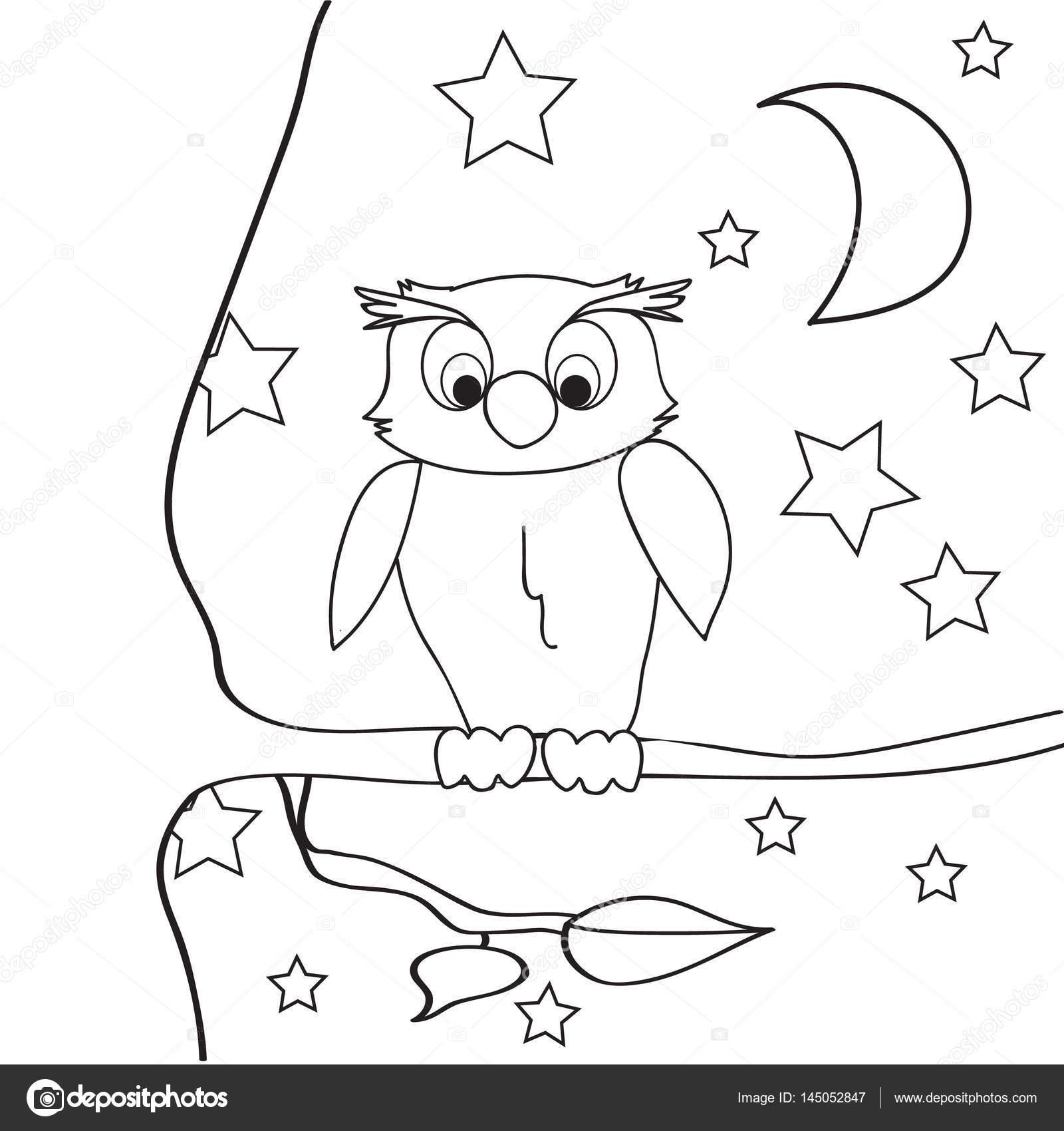 Baykuş Anahat Gece Boyama Stok Vektör Zolotons At Mailru 145052847