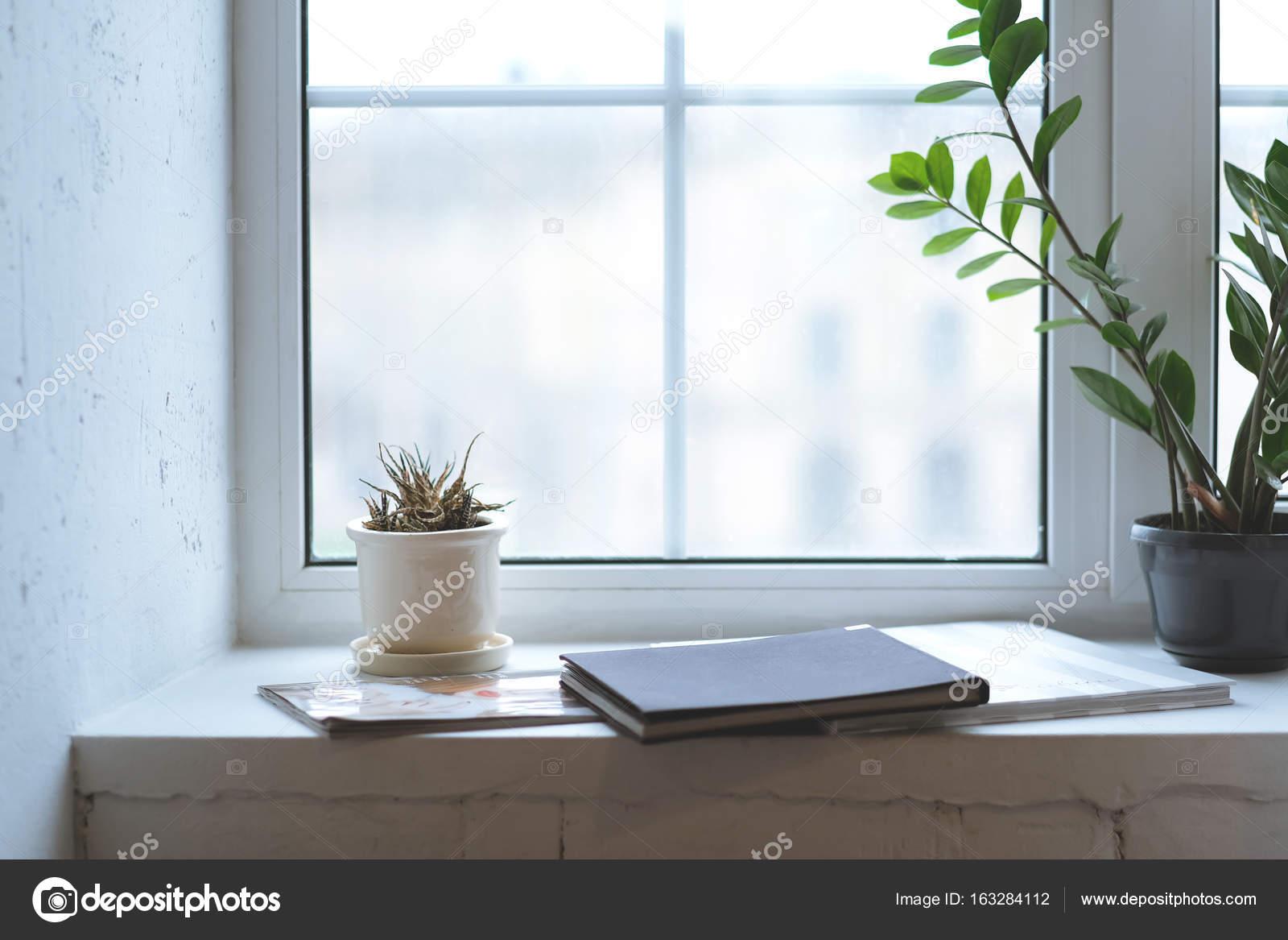 Weiße Wände Interieur minimalistisch - Pflanzen, Zeitschriften auf ...