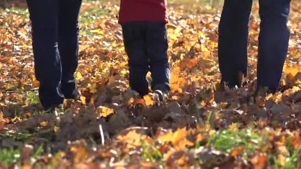 Family feet, parents and child feet, walking on fallen autumn leaves