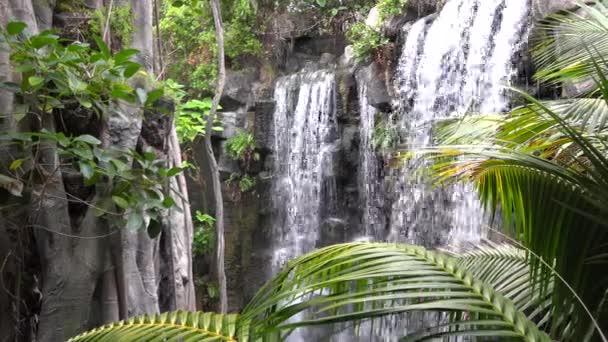 exotischer Wasserfall, frische Natur