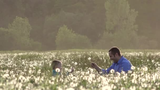 Father and son playing with dandelions, happy, smiling family