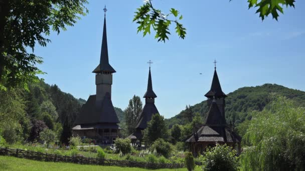 Church towers, green tree twig and blue sky, beautiful scenery, birsana, romania