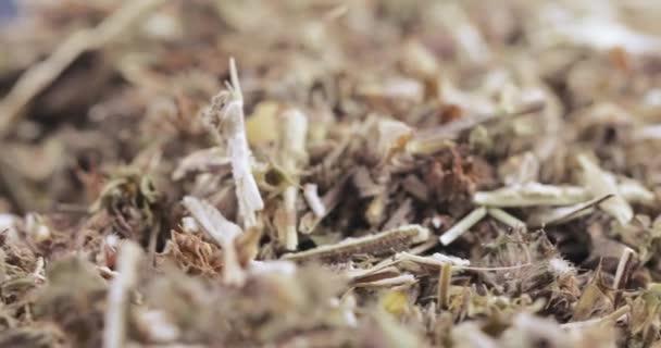 Motherwort fű ömlesztve