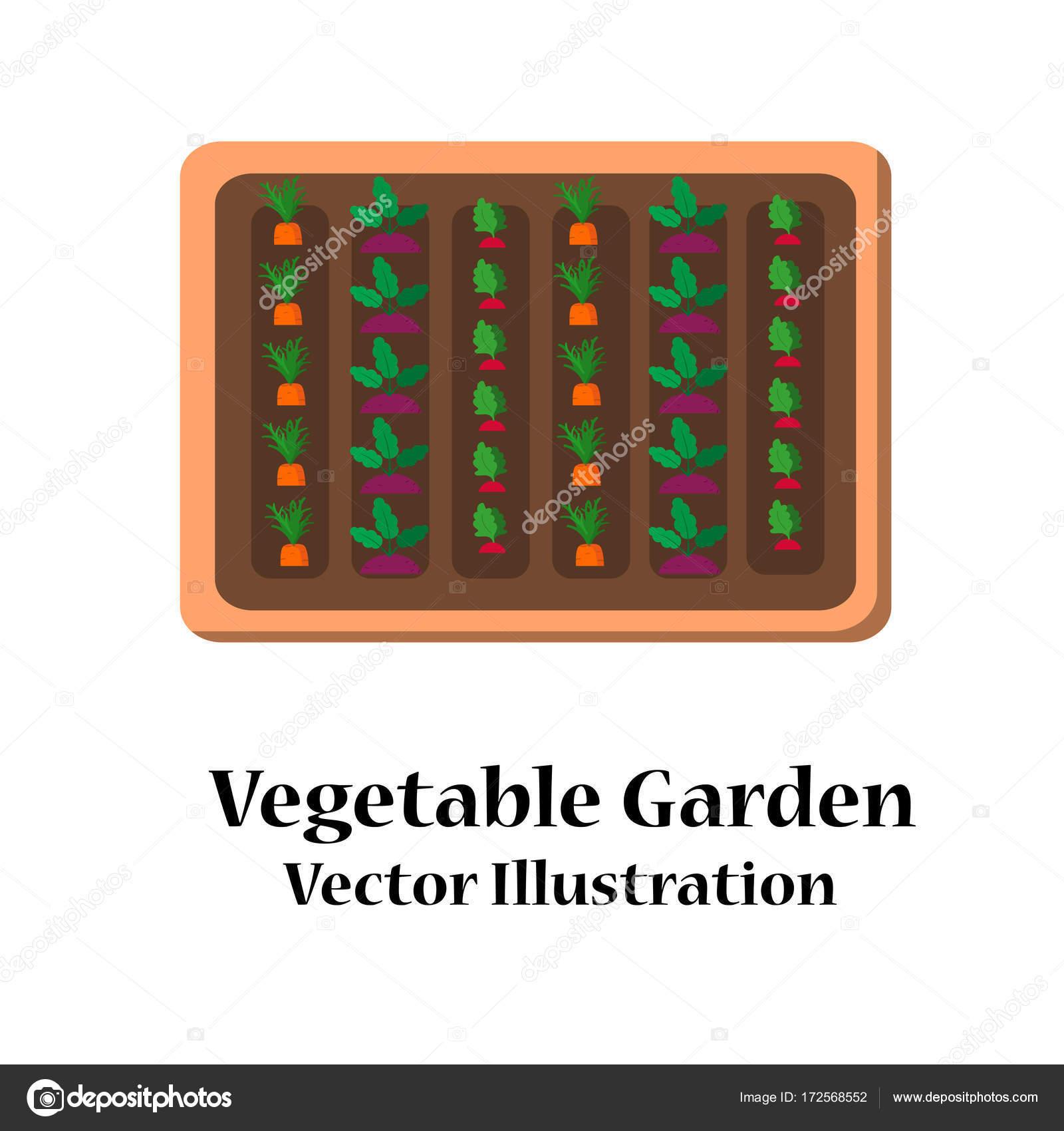 Vegetable garden planner flat design — Stock Vector © aksanamoon