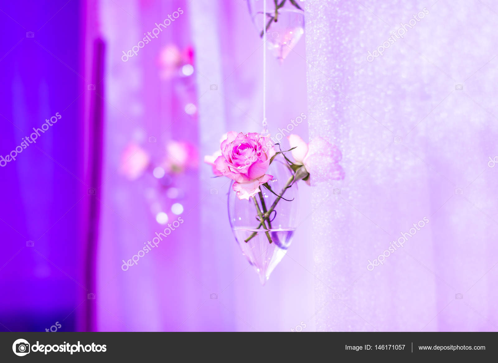 Hanging Party Wedding Decoration On Pink Background Flowers In A