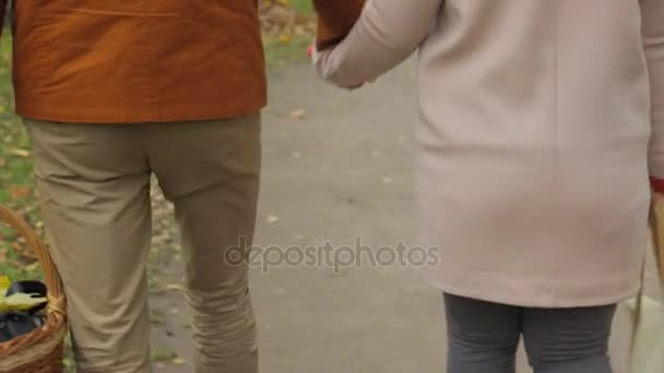 Szerelmes pár séta a parkban, és tartsa kezében. Szerelmesek a kezüket. Kültéri-fiatal pár-séta a út keresztül füves területen szeretetben. Férfi és nő séta füves területen