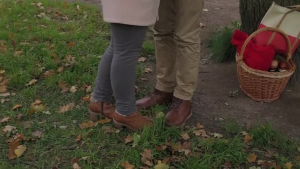 A view of a loving couple kissing in the park in autumn. Loving couple exchanging tenderness in the autumn park. lovely couple.