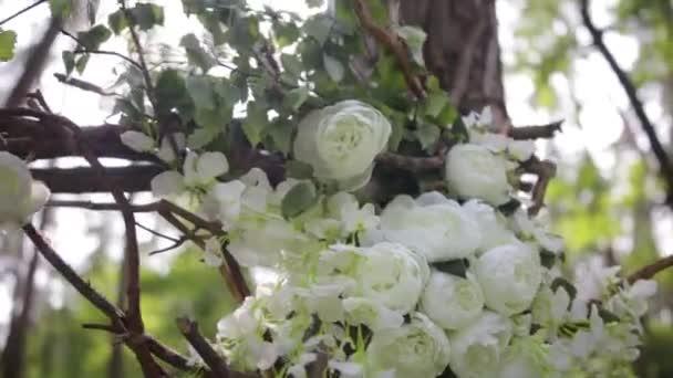 Krásné bílé bush růže. Dekorativní bílé květy na jasném slunci. Nabídková růže v zahradě. Krásné růže s zelenými listy a trny. Dva pupeny květů bílé šípkové zblízka. Krásný bokeh