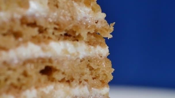 Vrstvený dort s jahodami. Duhový dort zavřít, vrstvený dort. Jahodový dort krátkou.