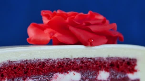 Bílý dort s čokoládové ozdoby a červený marcipán růže na tmavě modrém pozadí. dort zdobí jedlé červené růže zblízka