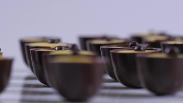Čokoládové bonbóny kolekce na bílém pozadí. Čokoládové pralinky zblízka