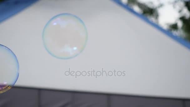 Mýdlová bublina. Mýdlová bublina na modré obloze. Banda magické svítící mýdlové bubliny nad kukuřičné pole před dřevo. Ledové bubliny