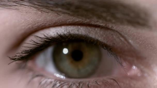 Nahaufnahme einer schönen jungen Frau mit grünen Augen. Makroaufnahme eines wunderschönen Auges mit extrem langen Wimpern. sexy Blick, sinnlicher Blick. Weibliches Auge mit langen Wimpern