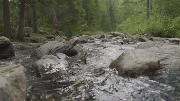 Mountain river in autumn time. Rocky shore. River flowing through Rocky Mountains