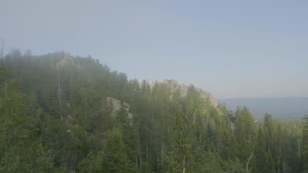 Horské vrcholy zobrazit horských lesních stromů. Hornatý terén a Les v mlze. Krásný les a hory